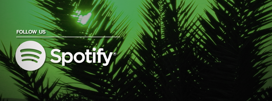 spotify_banner_no_follow